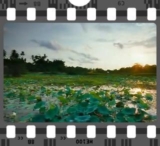 Rassegna di cinema indiano